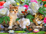 A Collection of 32 Adorable Cute Kitten pictures, with cute and funny poses14.60 MB