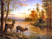 A Collection of 20 painted picture scenes by various artist of Beautiful deer, with Beautiful Landscape backgrounds 15.05 MB